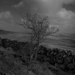 BURREN march 2017